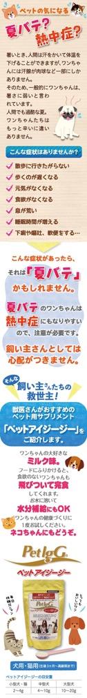 SNS/LP広告