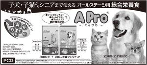全5d新聞広告